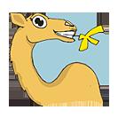 camela.co.il